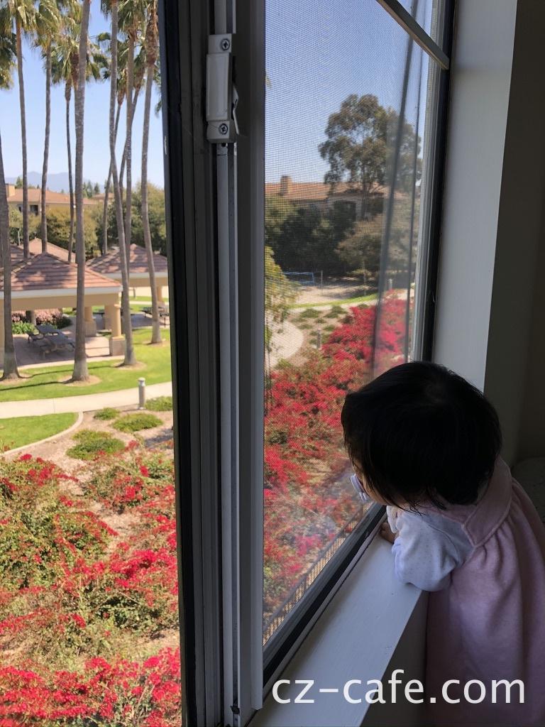 子供が外を眺める写真