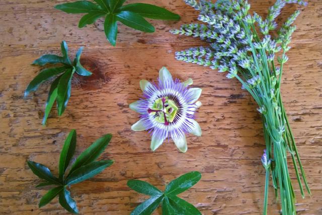 Lavender&Passiflora